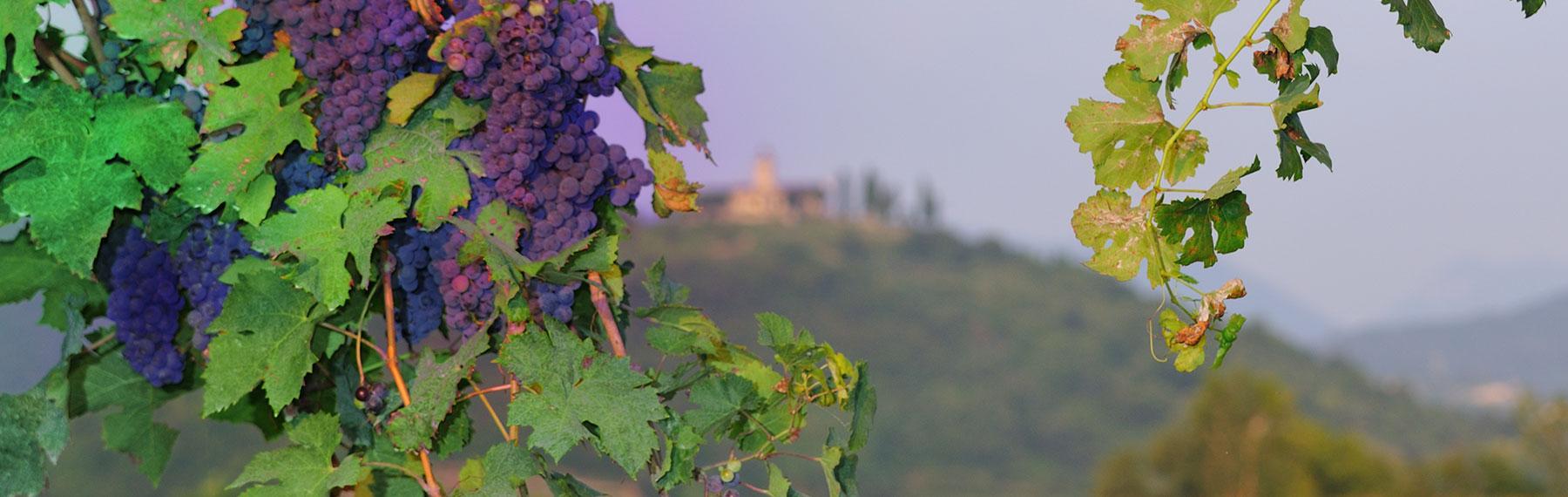 franciacorta castle